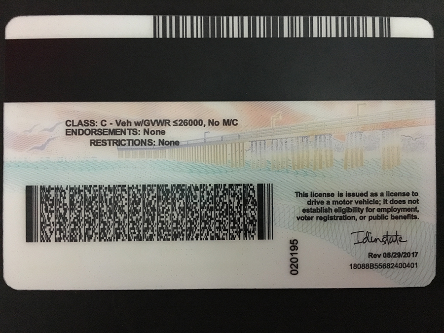 California New Ca Id State Id Best fake Fake